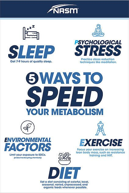 5 ways to speed up metabolism infographic