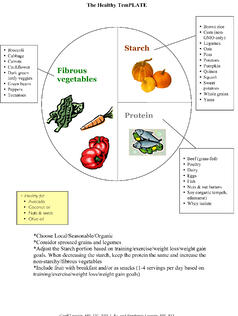 Microsoft Word - The Healthy Plate.doc