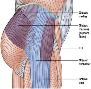 diagram of gluteus medius to IT band tract
