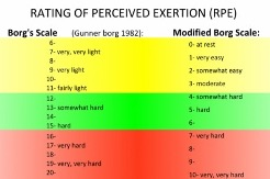 rating of percieved exertion chart