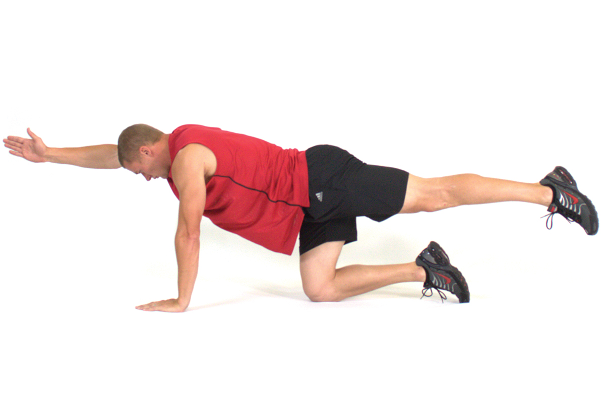 Quadruped Hip Extension - Arm Forward