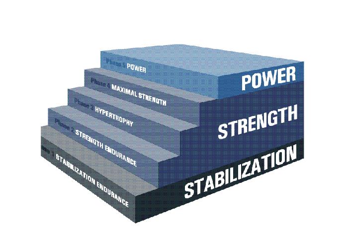 NASM opt model