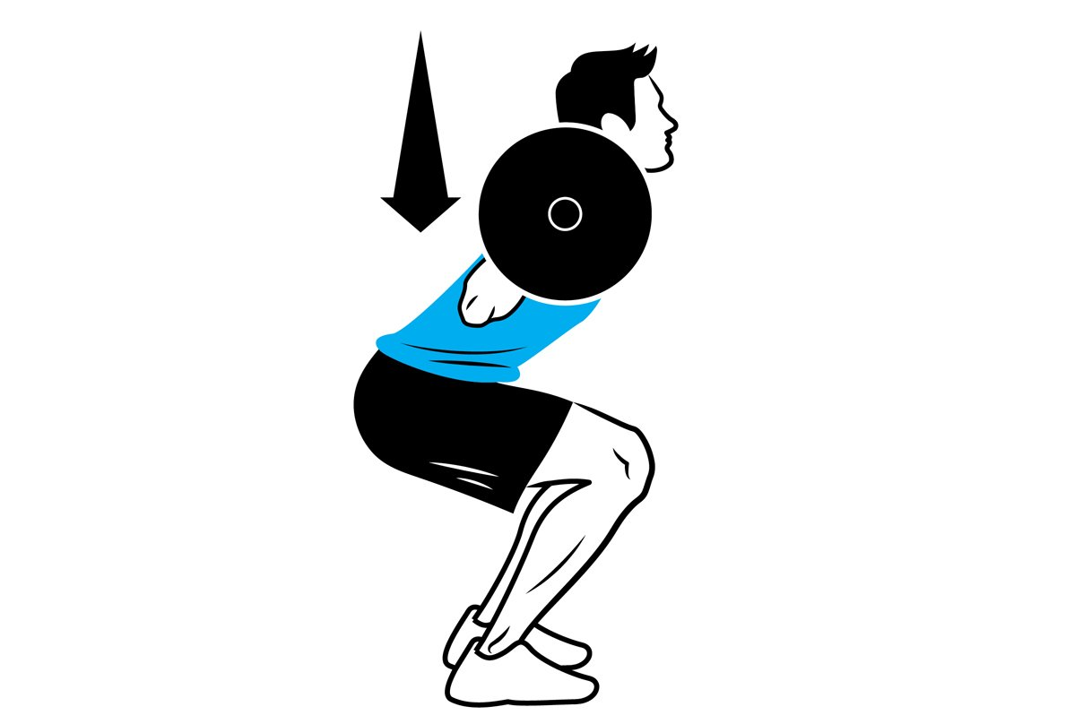 illustration of a barbell squat