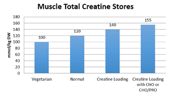 total creatine in muscle chart based on individual