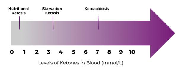 Ketones Levels for Blood