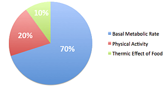 Metabolism Graph
