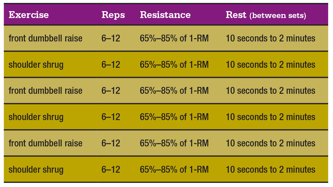 muscle-clock-chart-2