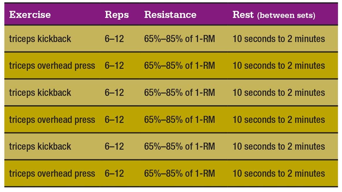muscle-clock-chart-3