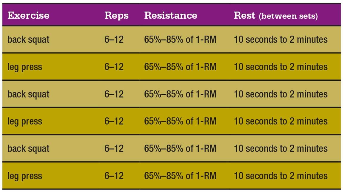 muscle-clock-chart-4