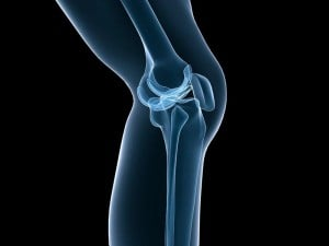 screw home rotation at the knee joint
