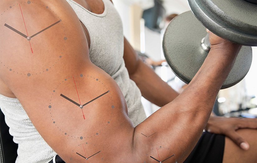 a man doing a bicep curl with clock diagrams on his arm muscles